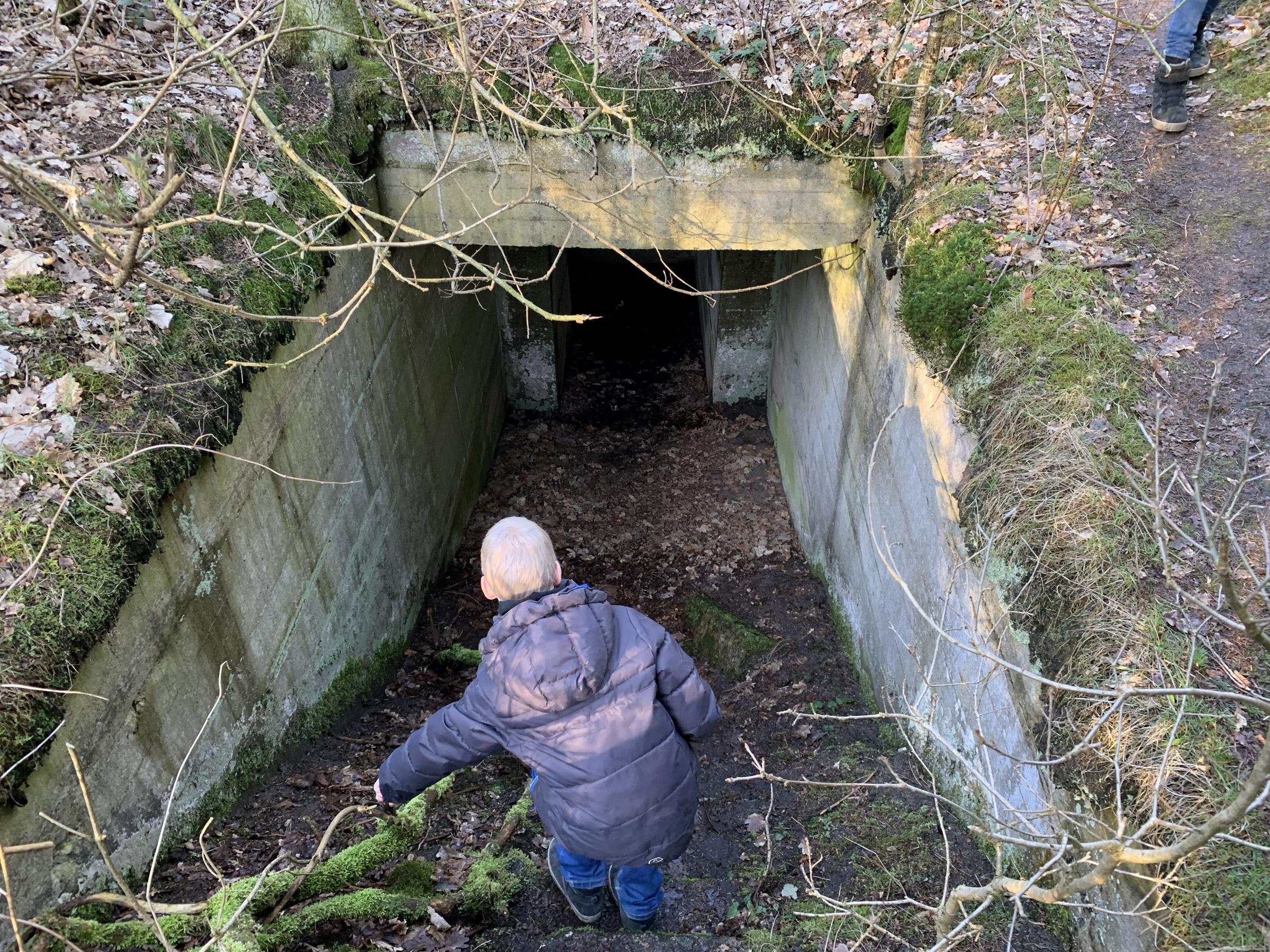 Bunkere Ved Gammel Ry